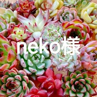 neko様(その他)