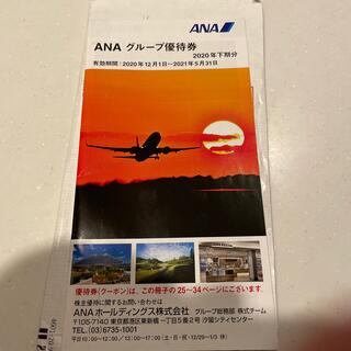 ANA グループ優待券 全日空 株主優待 ANAホールディングス(その他)