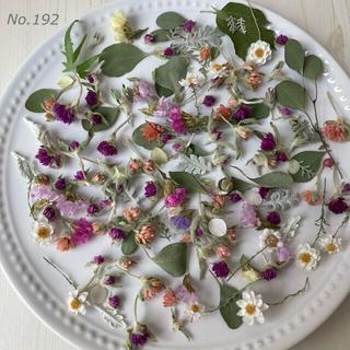 No.192  小さなドライフラワーの詰め合わせ 花材セット(ドライフラワー)