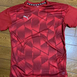 プーマ(PUMA)のプーマ半袖シャツ(ウェア)
