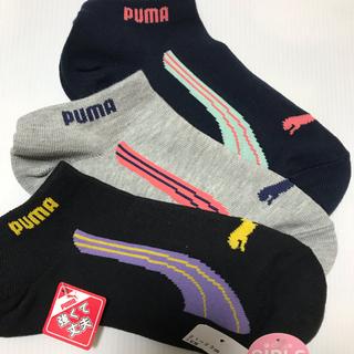 プーマ(PUMA)の新品☆ プーマ PUMA ソックス 靴下 ガールズ 6足セット(21-23cm)(靴下/タイツ)