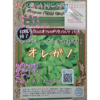 オレガノ ワイルドマジョラム 固定種 家庭菜園 水耕栽培 野菜の種 ハーブの種(野菜)