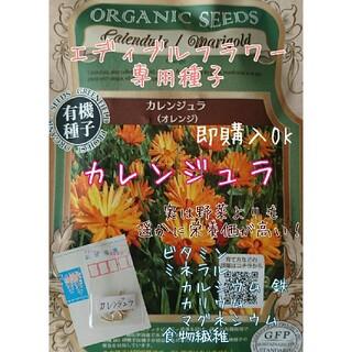 カレンジュラ 固定種 野菜の種 ハーブの種 水耕栽培  エディブルフラワー 種子(野菜)