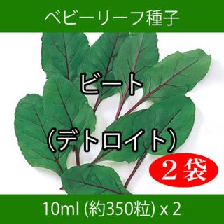 ベビーリーフ種子 B-46 ビート(デトロイト) 10ml 約350粒 x 2袋(野菜)