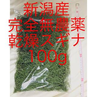 新潟産 無農薬 乾燥 スギナ 約100g 梱包材含む(野菜)