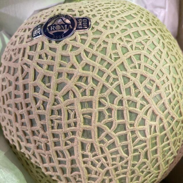 静岡 高級アールスメロン 白5玉 隔離栽培 アローマ 食品/飲料/酒の食品(フルーツ)の商品写真