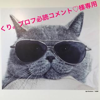 INTEGRATE - インテグレート グレイシィ♡顔色アップベース