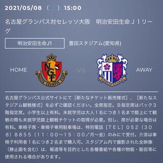 名古屋グランパス vs セレッソ大阪 ゴール裏指定席南側Sスタンド1階 1枚(サッカー)