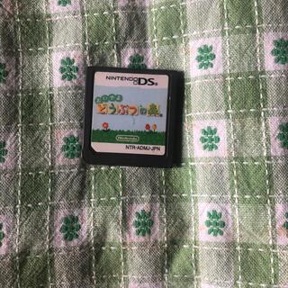 ニンテンドーDS(ニンテンドーDS)のおいでよどうぶつの森 任天堂DS(家庭用ゲームソフト)