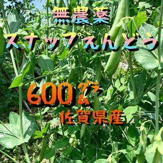 スナップえんどう(野菜)