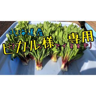 1.5キロ ヒカル様専用(野菜)