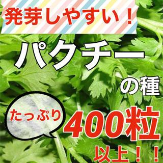 【大人気‼️】コリアンダー(パクチー)の種 約400粒‼️ ハーブ 野菜 タネ(野菜)