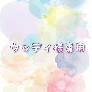 ウッディ様専用(CD/DVD収納)