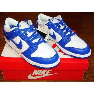 NIKE DUNK LOW SP KENTUCKY 29cm(スニーカー)