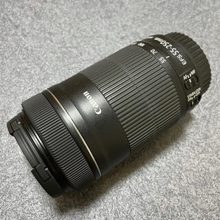 Canon - Canon EF-S55-250F4-5.6 IS STM