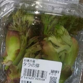 タラの芽(野菜)