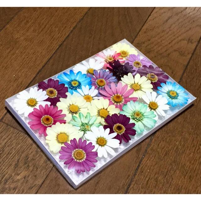 s①  銀の紫陽花が作った可愛いマーガレットのドライフラワー ハンドメイドのフラワー/ガーデン(ドライフラワー)の商品写真