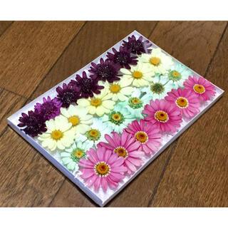 s②  銀の紫陽花が作った大人色マーガレットのドライフラワー(ドライフラワー)