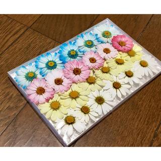 s④ 銀の紫陽花が作った可愛いマーガレットのドライフラワー(ドライフラワー)