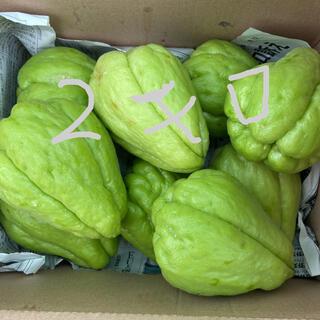 ハヤトウリ 2キロ 沖縄県産(野菜)