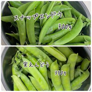 実えんどう スナップエンドウ  奈良県産(野菜)