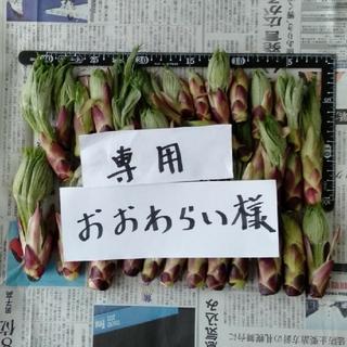 ハリギリ400g  おおわらい様専用(野菜)