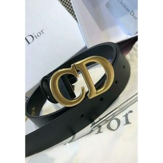 Dior - Dior ベルト サドル