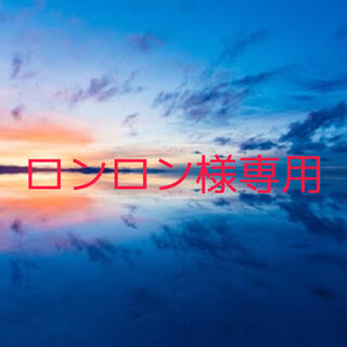 ロンロン様専用3(その他)
