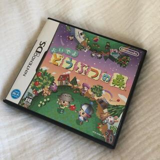 ニンテンドーDS(ニンテンドーDS)のおいでよ どうぶつの森 DS(家庭用ゲームソフト)