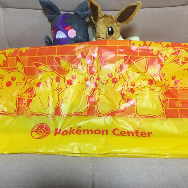 ポケモン 福袋 エンタメ/ホビーのおもちゃ/ぬいぐるみ(キャラクターグッズ)の商品写真