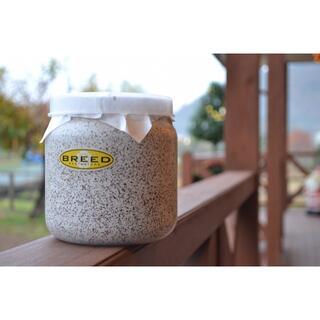 BREED 1500 菌糸ビン 2本 とぽん様(虫類)