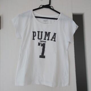 プーマ(PUMA)のPUMA プーマホワイトTシャツ(Tシャツ/カットソー)