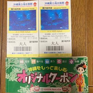 美ら海水族館 大人2枚+オリジナルクーポン(水族館)