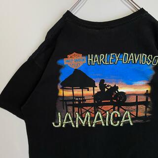 Harley Davidson - ハーレーダビッドソン Tシャツ Harley Davidson ビンテージ