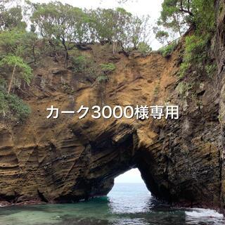 カーク3000様専用(その他)