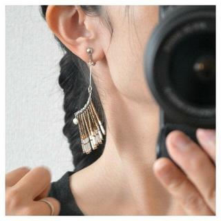 アングリッド(Ungrid)のTassel Serie Beads Design BROWN(ピアス)
