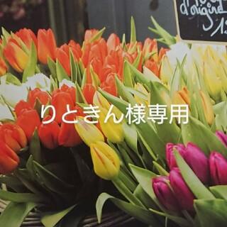 ☆りときん様専用☆(缶詰/瓶詰)