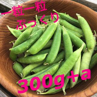 グリーンピース(さや付き)(野菜)