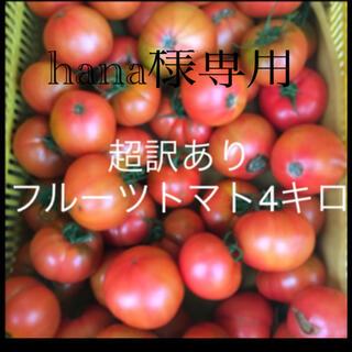 hana様専用 超訳あり4キロ増量400グラム(野菜)