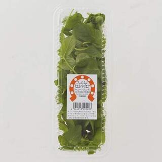 イエルバ・ブエナ(キューバミント) 【冷蔵】 10個(野菜)