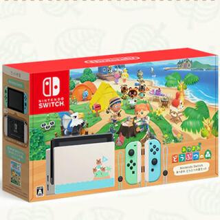 Nintendo Switch - あつまれ動物の森 Switch