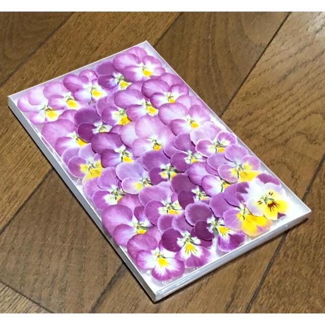 s⑥ 銀の紫陽花が作った可愛いピンクビオラのドライフラワー ハンドメイドのフラワー/ガーデン(ドライフラワー)の商品写真