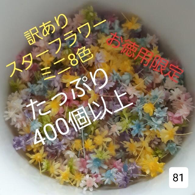 訳あり81スターフラワーミニ8色 400個以上 ハンドメイドのフラワー/ガーデン(ドライフラワー)の商品写真