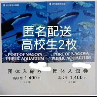 名古屋港水族館 高校生チケット2枚(水族館)