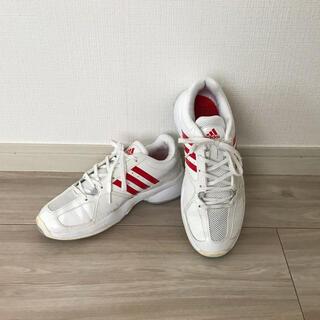 アディダス(adidas)のAdidas 23.5cn テニスシューズ アディダス(シューズ)