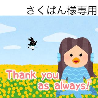 5/4 さくぱん様専用