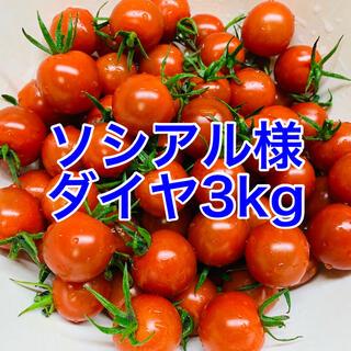 ソシアル様専用(野菜)