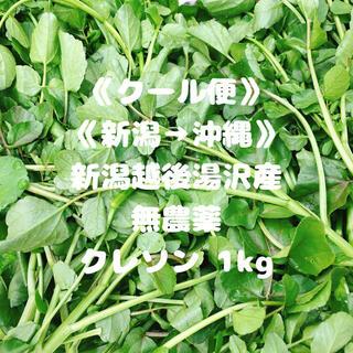 《クール便》《無農薬》《新潟→沖縄》クレソン1kg(野菜)