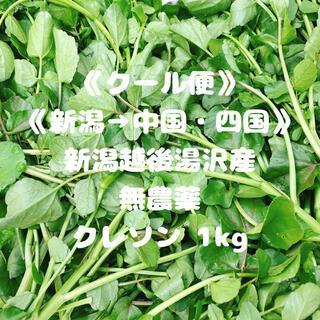 《クール便》《新潟→中国・四国》《無農薬》クレソン1kg(野菜)