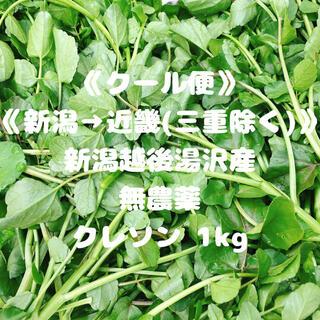 《クール便》《新潟→近畿(三重を除く)》《無農薬》クレソン1kg(野菜)